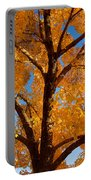 Perfect Autumn Day With Blue Skies Portable Battery Charger