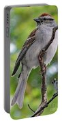 Perfect Profile - Chipping Sparrow Portable Battery Charger
