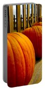 Perfect Row Of Pumpkins Portable Battery Charger