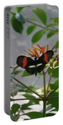 Perfect Set - Butterfly Portable Battery Charger