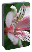Perivian Lily With Ant Portable Battery Charger