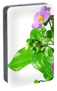 Persian Violets Portable Battery Charger