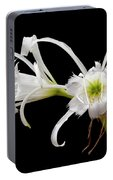 Peruvian Daffodils Portable Battery Charger