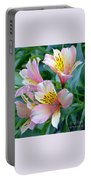 Peruvian Lily Of The Incas Portable Battery Charger