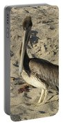 Peruvian Pelican Standing On A Sandy Beach Portable Battery Charger