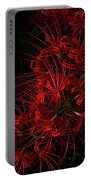 Petals Of Fireworks Portable Battery Charger