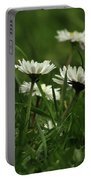 Petite Daisies 5 Portable Battery Charger