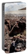 Petrified Wood #2 Portable Battery Charger