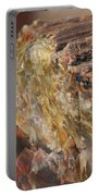 Petrified Wood Portable Battery Charger