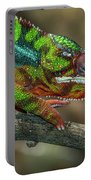 Ambilobe Panther Chameleon Portable Battery Charger