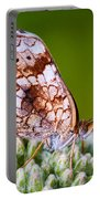 Phaon Crescent Portable Battery Charger