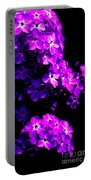 Phlox 1 Portable Battery Charger