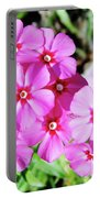 Phlox Beside The Road Portable Battery Charger