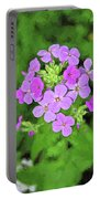 Phlox For You Portable Battery Charger