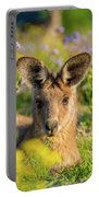 Photogenic Kangaroo Portable Battery Charger