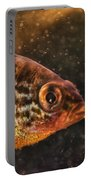 Pices In Aquarium Portable Battery Charger