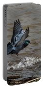 Pigeon Getting Ready To Land Portable Battery Charger