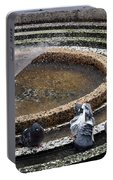 Pigeons Are In The Fountain Refreshes Portable Battery Charger