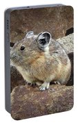Pika - Weminuche Wilderness - Colorado Portable Battery Charger