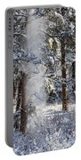 Pike National Forest Snowstorm Portable Battery Charger