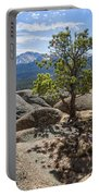 Pikes Peak Bristlecone Portable Battery Charger