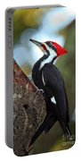 Pilated Woodpecker Portable Battery Charger