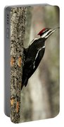 Pileated About To Take Flight Portable Battery Charger