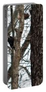 Pileated Billed Woodpecker Portable Battery Charger