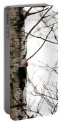 Pileated Portable Battery Charger