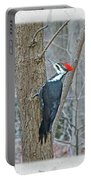 Pileated Woodpecker - Dryocopus Pileatus Portable Battery Charger