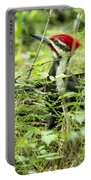 Pileated Woodpecker On The Ground No. 1 Portable Battery Charger