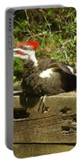 Pileated Woodpecker1 Portable Battery Charger