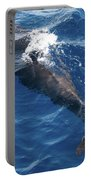 Pilot Whale 3 Portable Battery Charger