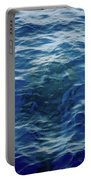 Pilot Whale 9 The Mermaid  Portable Battery Charger