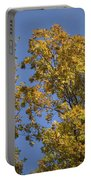 Pin Oaks In The Fall No 1 Portable Battery Charger