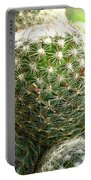 Pincushion Cactus Portable Battery Charger