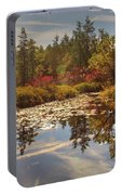 Pine Barrens New Jersey Whitesbog Nj Portable Battery Charger