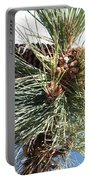 Pine Cones Over Lake Tahoe Portable Battery Charger
