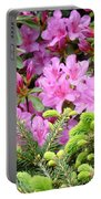 Pine Conifer Pink Azaleas 30 Summer Azalea Flowers Giclee Art Prints Baslee Troutman Portable Battery Charger