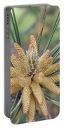 Pine Flower In Summer  Close Up Portable Battery Charger