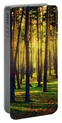 Pine Forest In La Boca Del Asno-segovia-spain Portable Battery Charger