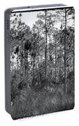 Pine Land In B/w Portable Battery Charger by Rudy Umans