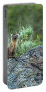 Pine Marten With Attitude Portable Battery Charger