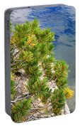 Pine Needles Over Water Portable Battery Charger