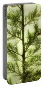 Pine Shower Portable Battery Charger