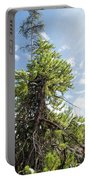 Pine Tree Alive Portable Battery Charger