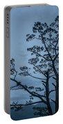 Pine Tree Antigua Guatemala Portable Battery Charger