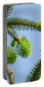 Pine Tree Branches Art Prints Blue Sky Botanical Baslee Troutman Portable Battery Charger
