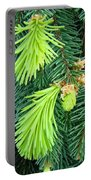 Pine Tree Branches Art Prints Conifer Forest Baslee Troutman Portable Battery Charger
