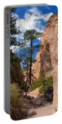 Pine Tree Canyon Portable Battery Charger